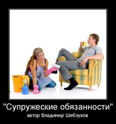 Супружеские обязанности