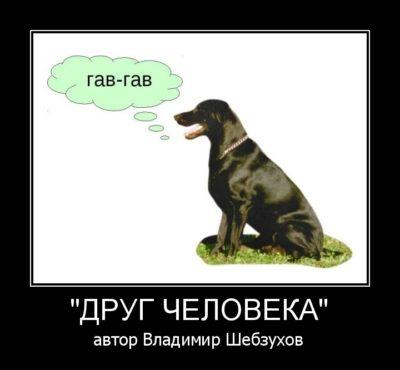 Владимир Шебзухов «Собачий трактат» стихи о собаках и собачках