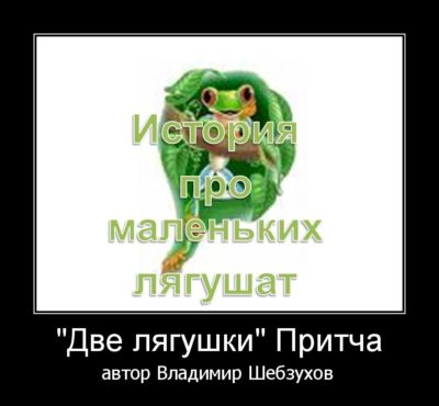 Владимир Шебзухов «Две лягушки» читает Наталия Новик